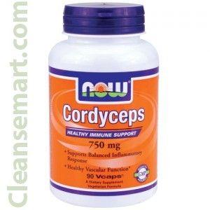 Cordyceps Mushroom Cordyceps Cordyceps Sinensis Cordyceps Supplements Vitamins For Energy Vitamins Supplements Nutrition Wellness