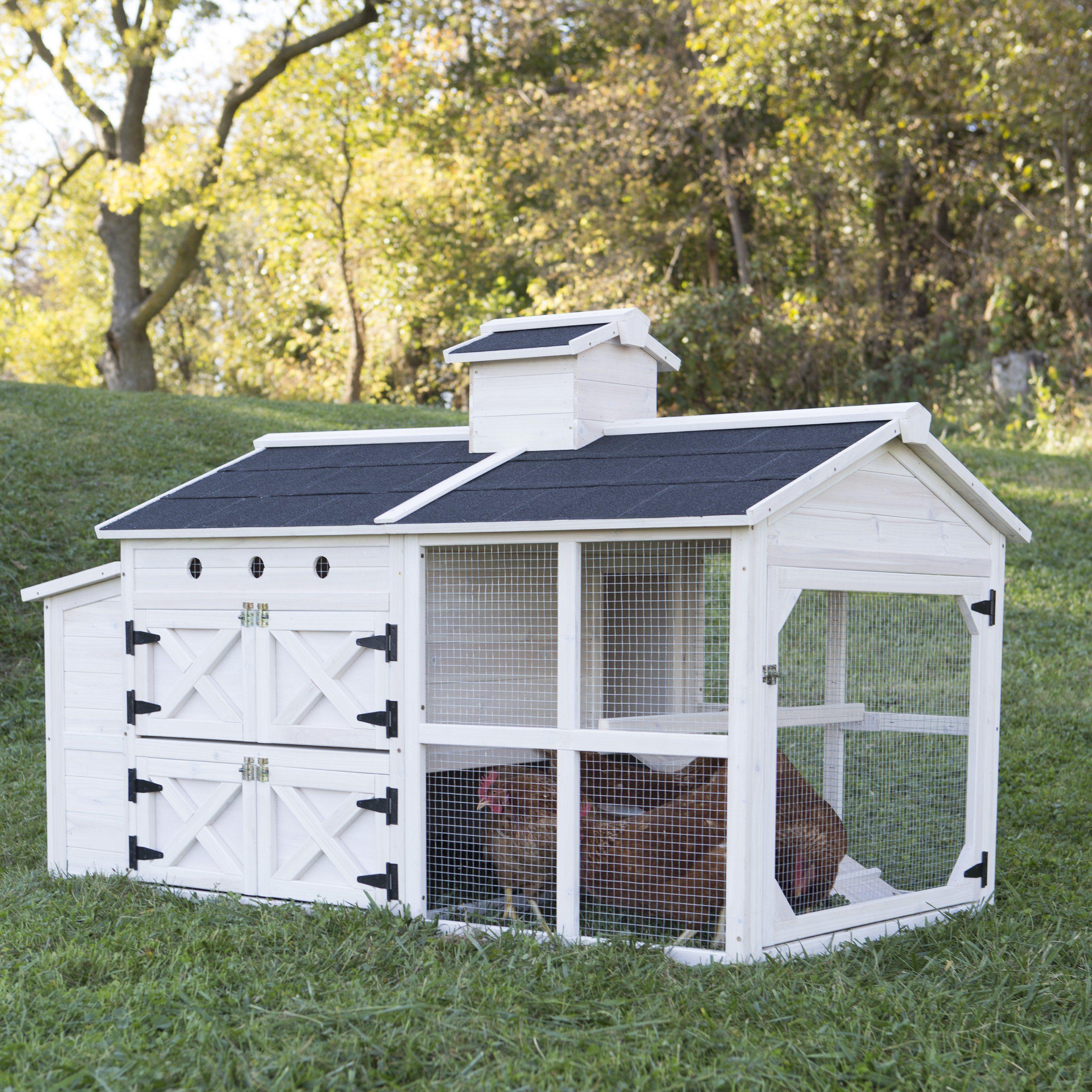 Boomer George Cottage Chicken Coop Mp166 Urban Chicken
