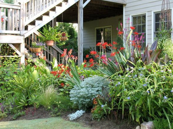 Garden Design Zone 5 tropical garden zone 9 | tropical garden | tropical iowa garden