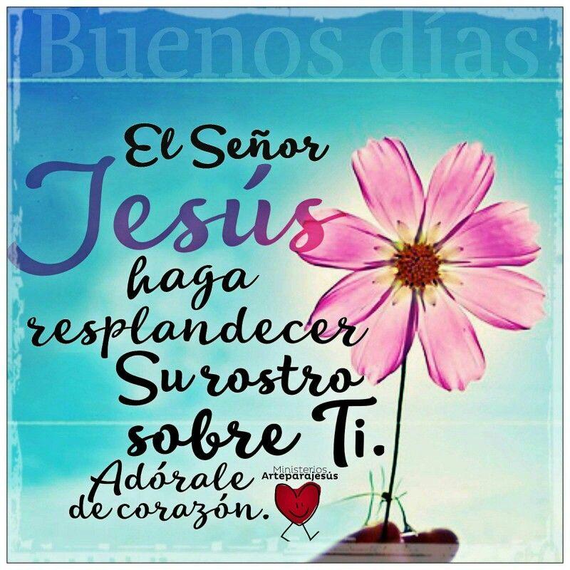 Números 6:24-26 Jehová te bendiga, y te guarde; Jehová haga resplandecer su rostro sobre ti, y tenga de ti misericordia; Jehová alce sobre ti su rostro, y ponga en ti paz.♔