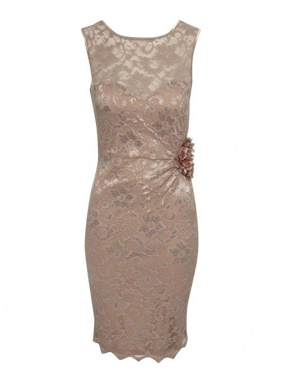 Lace Corsage Dress | Dresses | Shop by Item | Clothing | Jane Norman