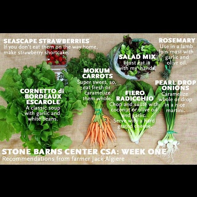 Each week we'll take a look at what #SeasonalEatingLooksLike through the lens of our CSA. Here's farmer Jack's vision! #Padgram