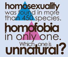 Homosexual quotes love