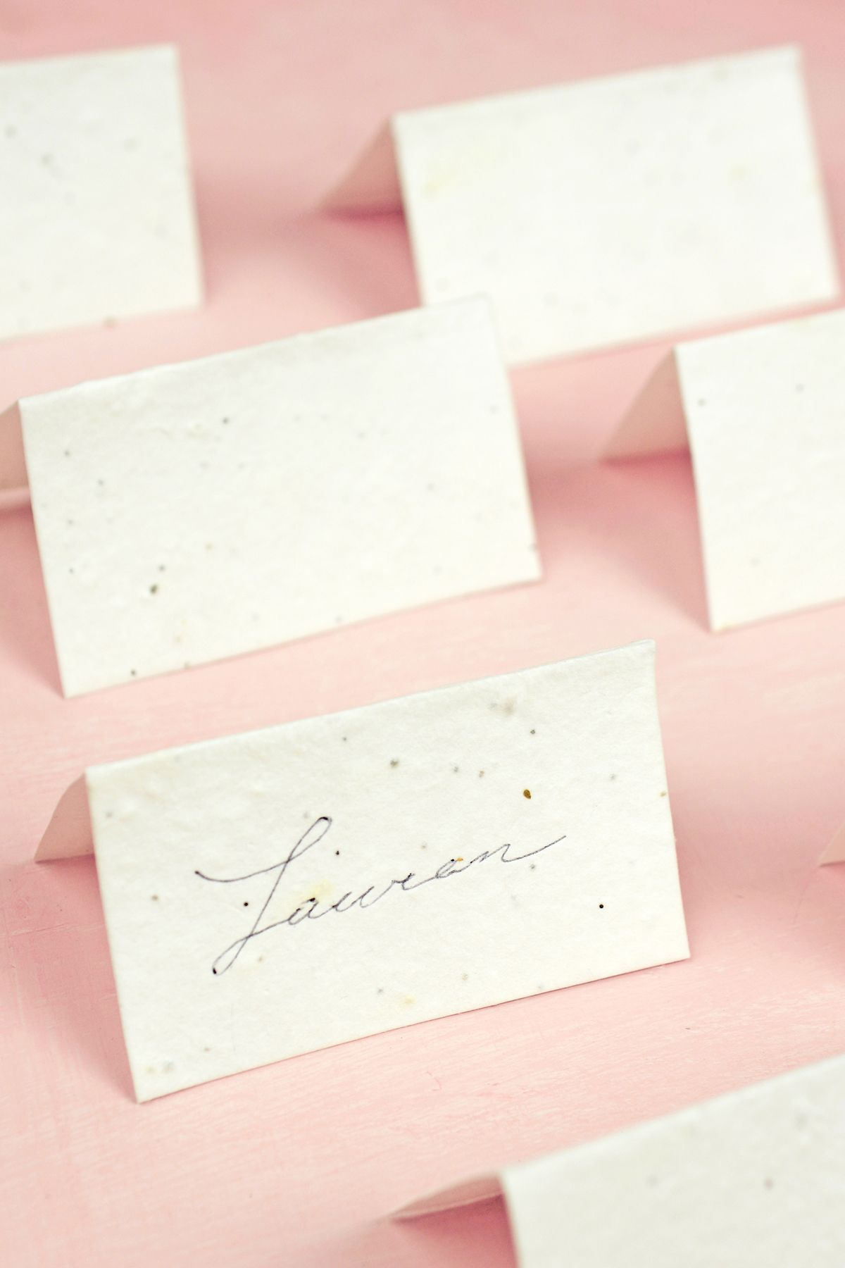 Seeded Paper, Rose Petal Cones, Lotka Paper Invitation Kits | Place ...