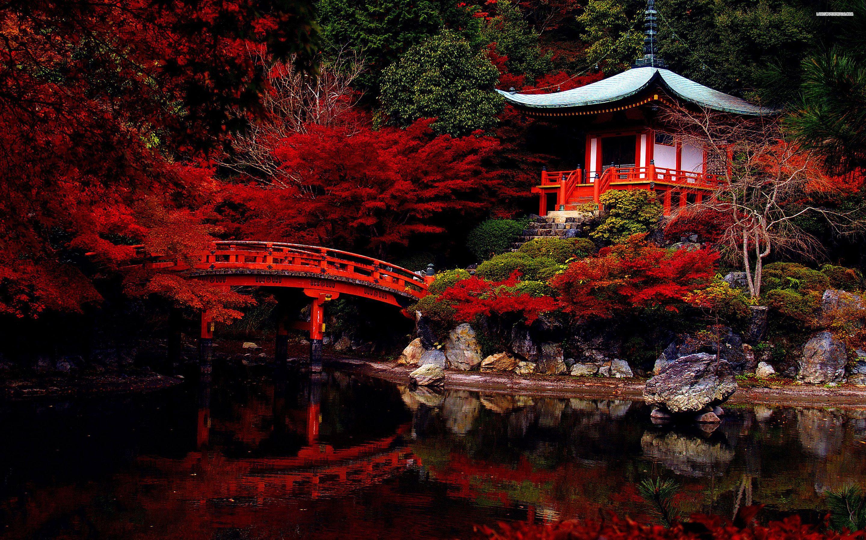 Autumn in the japanese garden wallpaper Landscapes