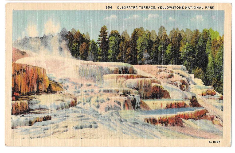 Cleopatra Terrace At Mammoth Hot Springs Yellowstone
