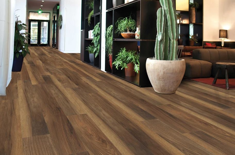 Shaw Transcend Rigid Core Planks (With images) Flooring