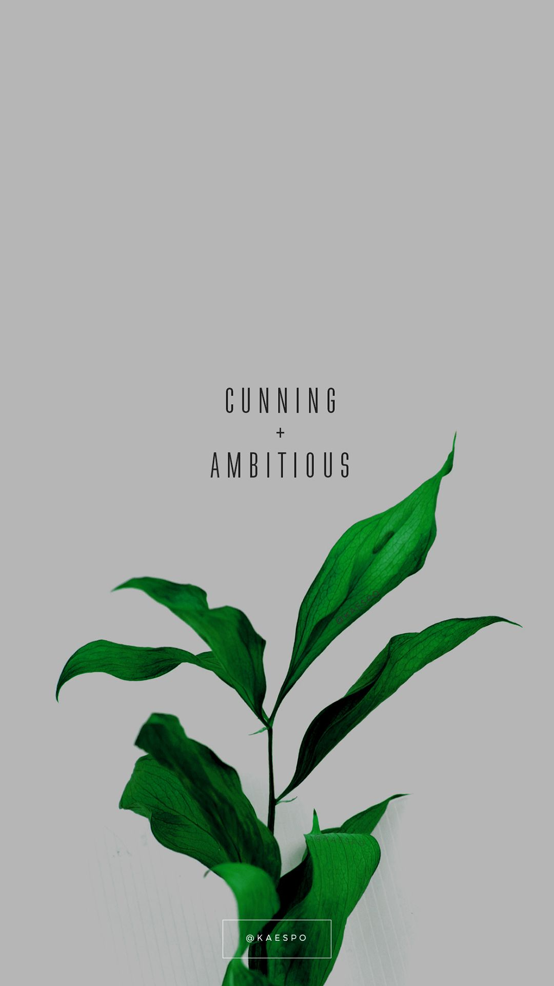 'Cunning And Ambitious Quote on Green Floral Background
