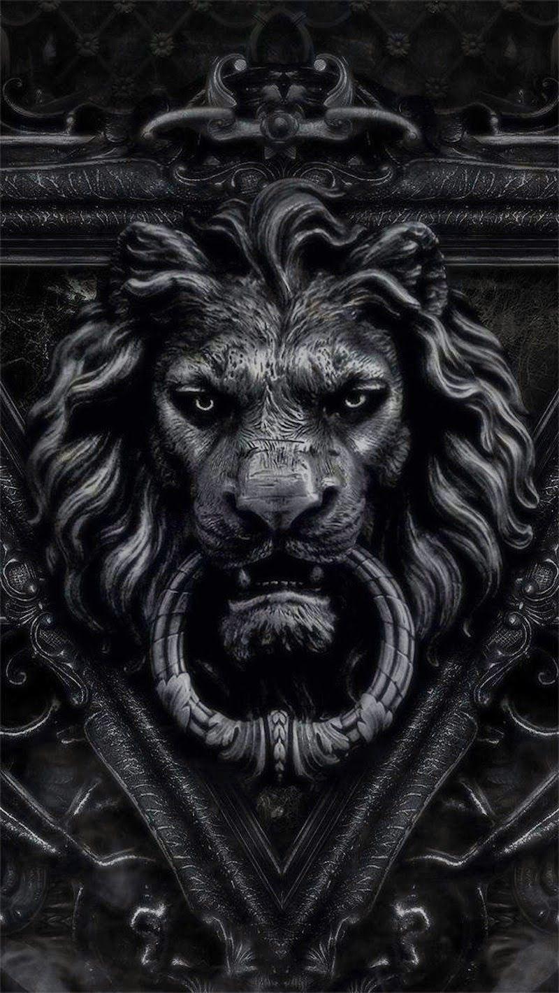 BLACK LION  0cb5711ca023