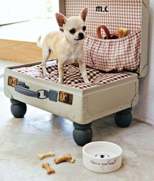 Chihuahua Betten: 24 Tolle Ideen Wie Sie Ihr Bett Neu