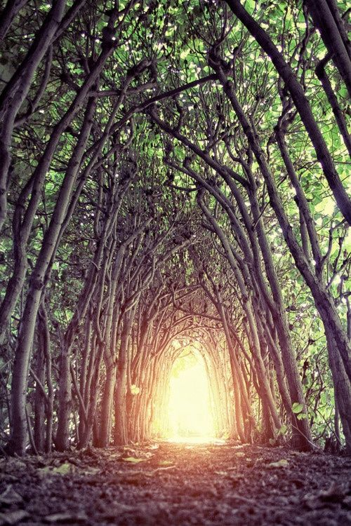 Light at the end of the tunnel or a place for the imagination to prosper