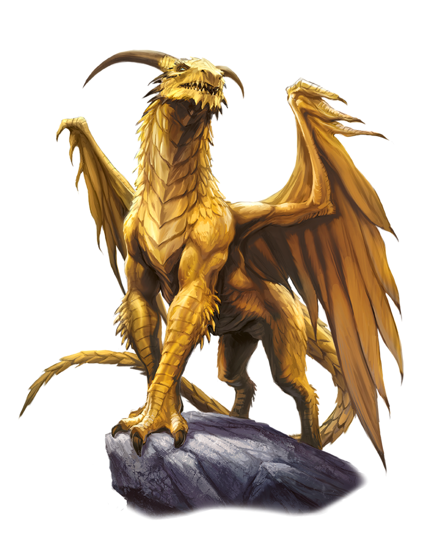 5e gold dragon art all steroid hormones are derived from cholesterol