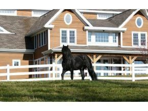 Temple, NH: Home is where your horse is!