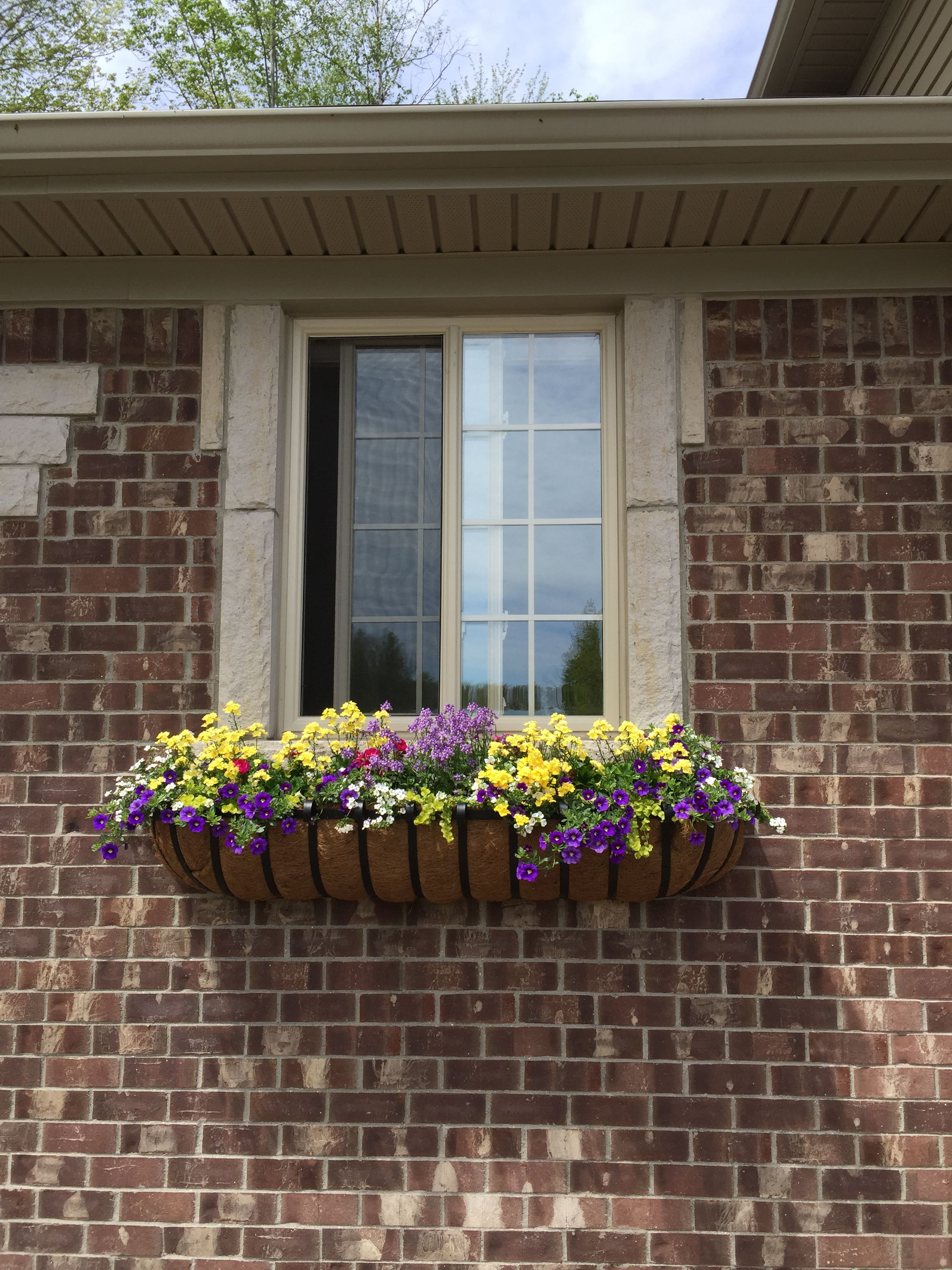 Just in from mary jane her english garden window boxes bring life to her gorgeous brick home for Garden of life customer service