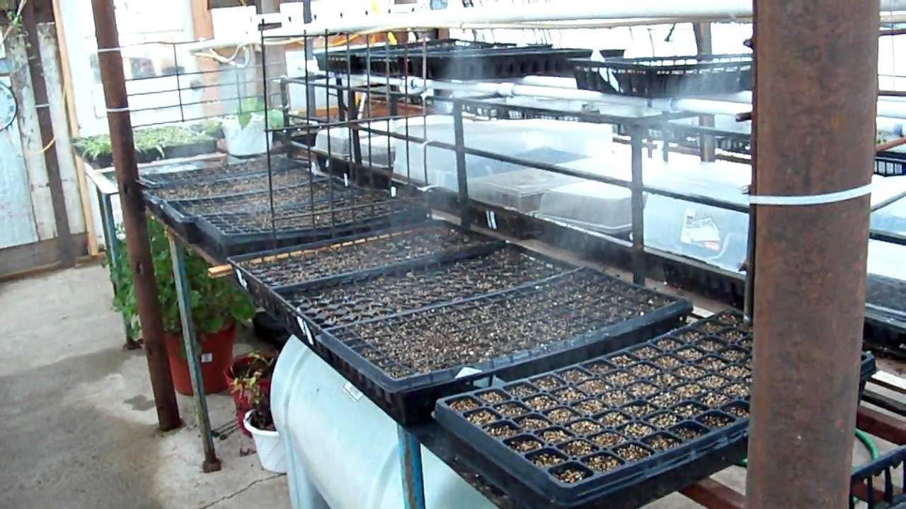 Diy Misting System For Greenhouse
