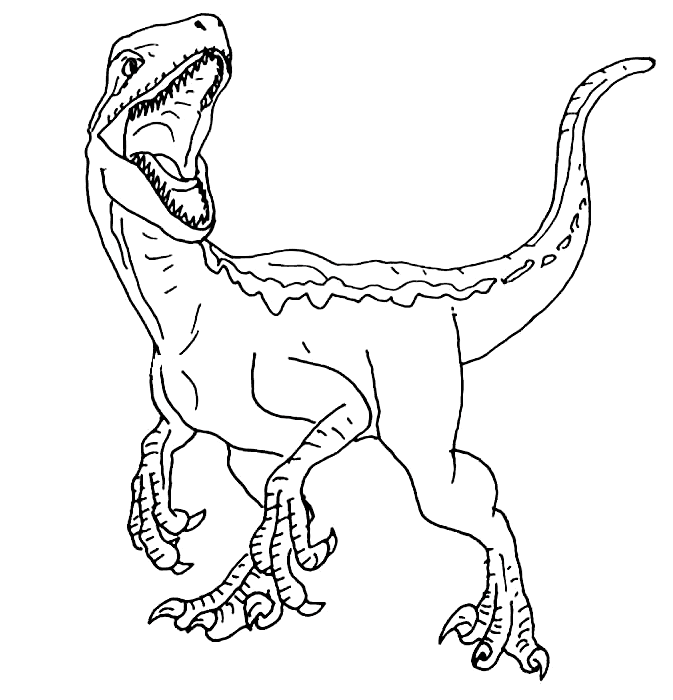 Blue Jurassic World Coloring Page Dinosaur Coloring Pages Dinosaur Coloring Blue Jurassic World