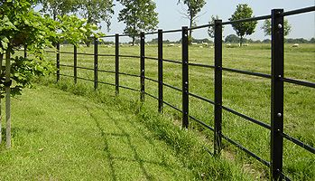 Iron Railing Fencing Google Search Fencing Fence