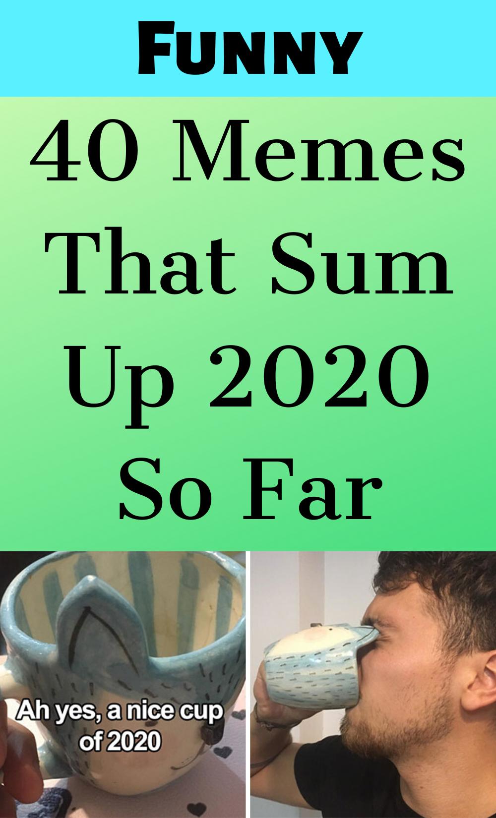 40 Memes That Sum Up 2020 So Far Memes Good Books Funny Jokes