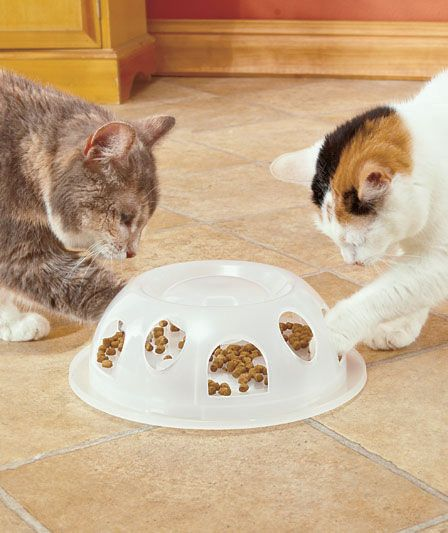 Pioneer Pet® Tiger Diner™ Slow Feeder|The Lakeside Collection