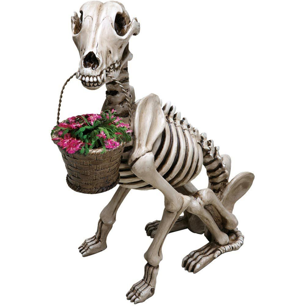tis the season to deck the halls with ghouls and goblins dog gardengnome gardendog skeletonskeleton flowerhalloween