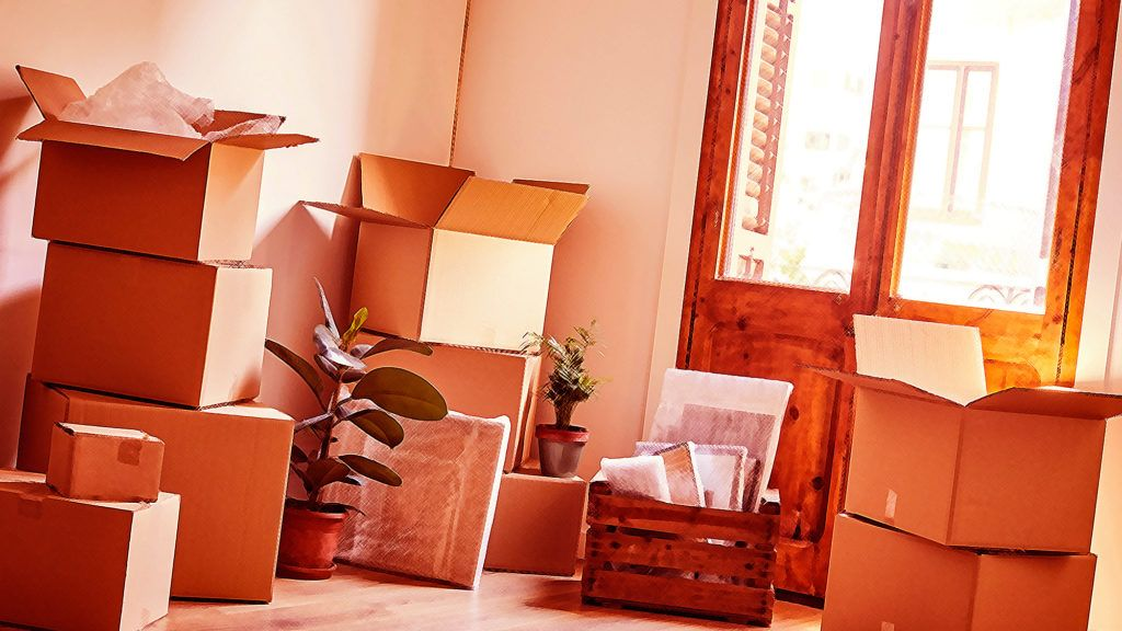 Don't Get Rid of the Boxes, and 4 Other Pro Tips for All ...