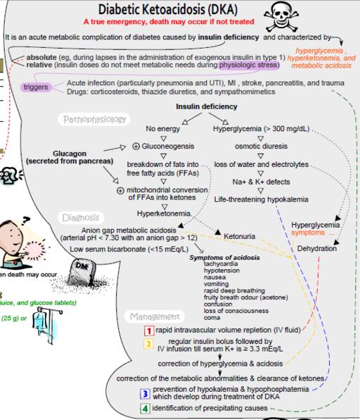 Diabetic Ketoacidosis Concept Map More About Diabetes Complications At CureForDiabetescouk