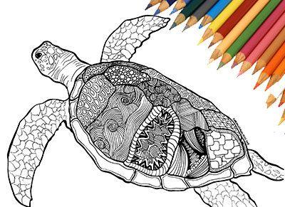 art collectibles drawing illustration zentangle mandala sea turtle turlte draw printable. Black Bedroom Furniture Sets. Home Design Ideas