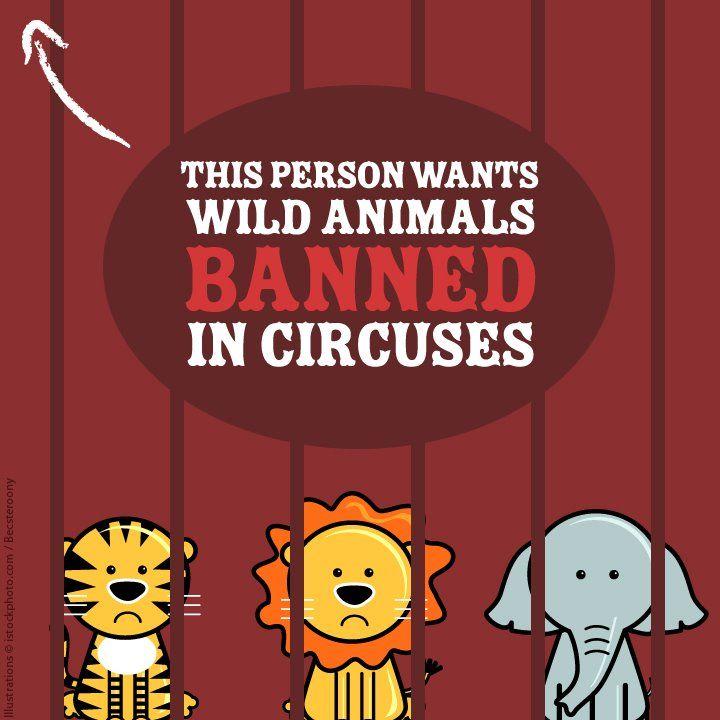 Ban animal circuses Animals wild