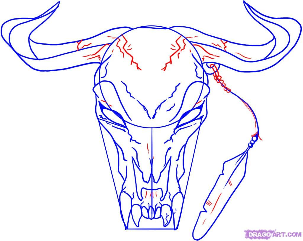 how to draw a longhorn head skull step 5 field day pinterest