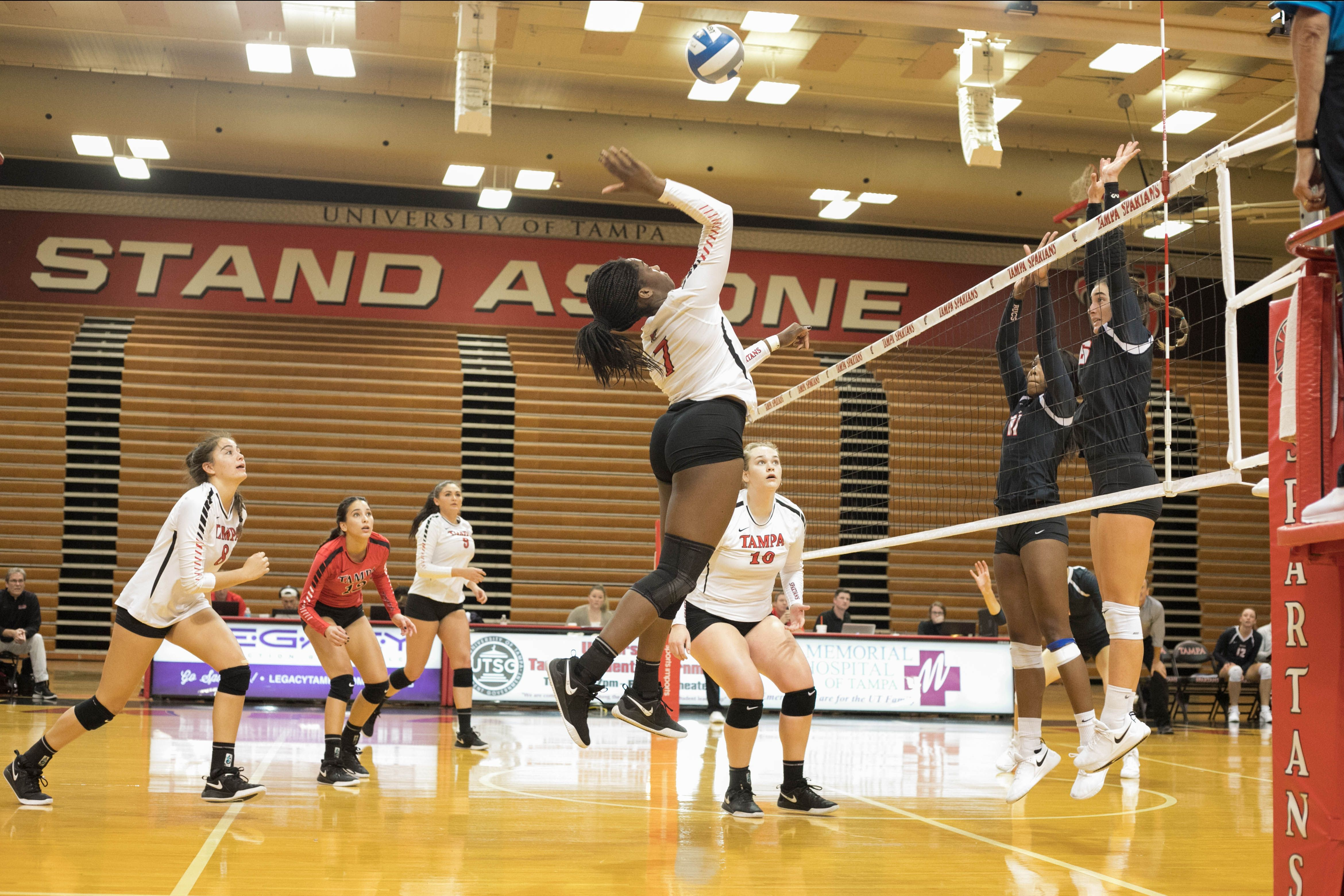 University Of Tampa Spartans Division Ii Athletics Women S Volleyball Women Volleyball University Of Tampa Athlete
