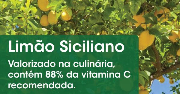 150428-limao-siciliano-acacia-garden-center-vasos-moveis-jardinagem-frutas-frutiferas-p