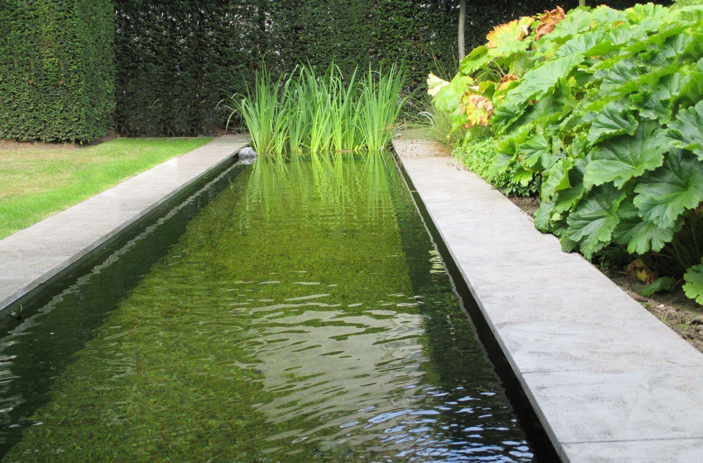projecten vertus garden for r pinterest jardins jardin contemporain et piscine bassin. Black Bedroom Furniture Sets. Home Design Ideas