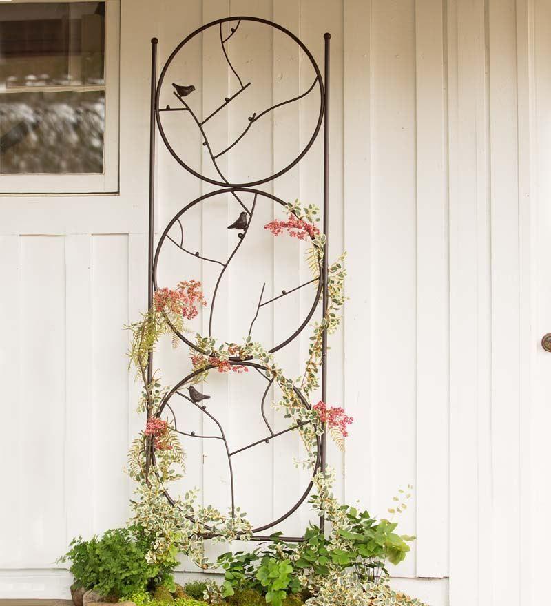 Circle Birds On Branches Garden Plant Trellises Tall Single Panel Metal  Trellis #ph