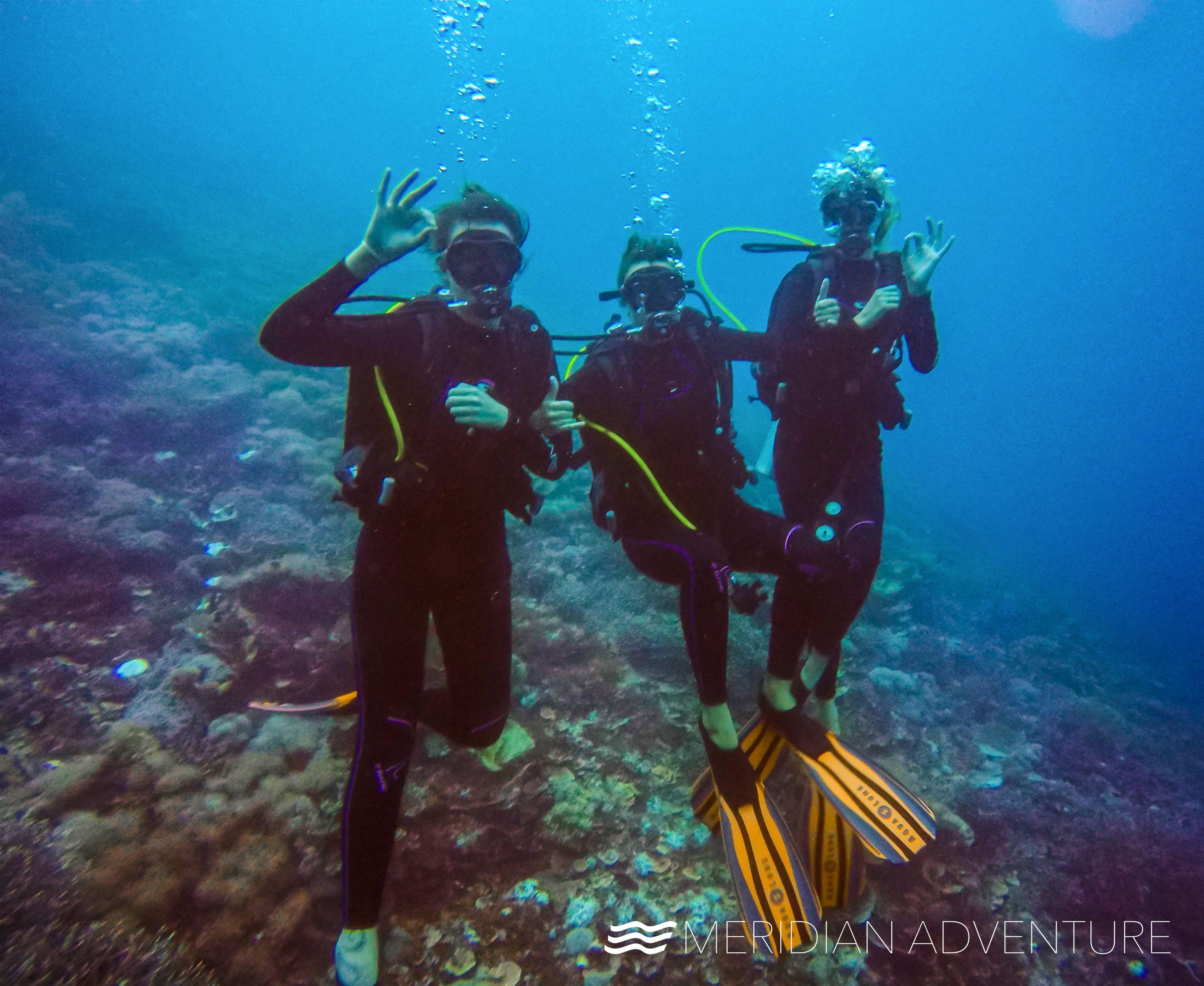 Girls Who Scuba Dive Thrive Dive Resort Diving Scuba Diving