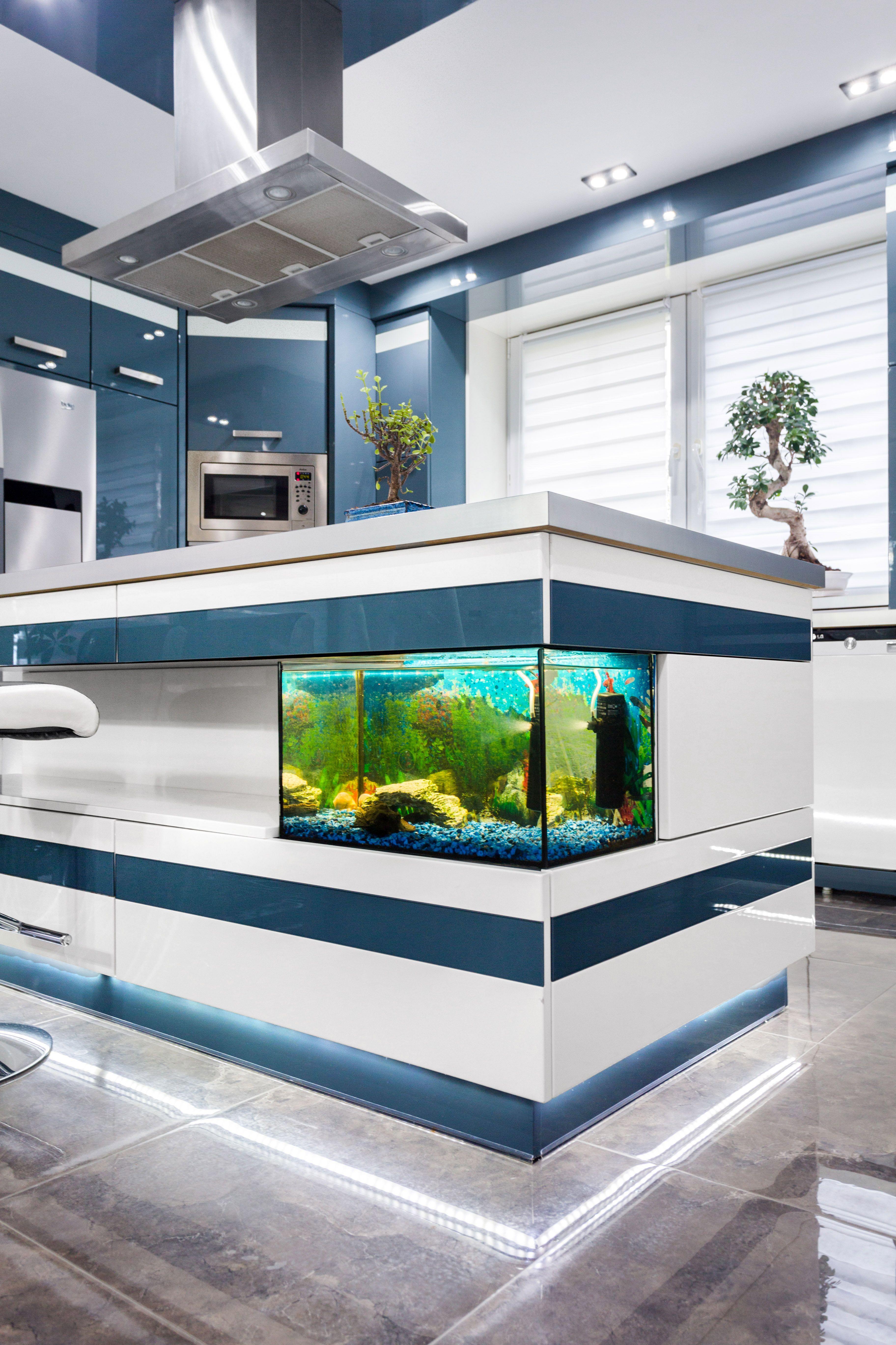 Wyspa Kuchenna Z Akwarium Kuchnia Inspiracje Aranzacja Design