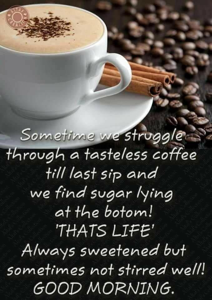 Good Morning Good Morning Quotes Morning Quotes Good Morning