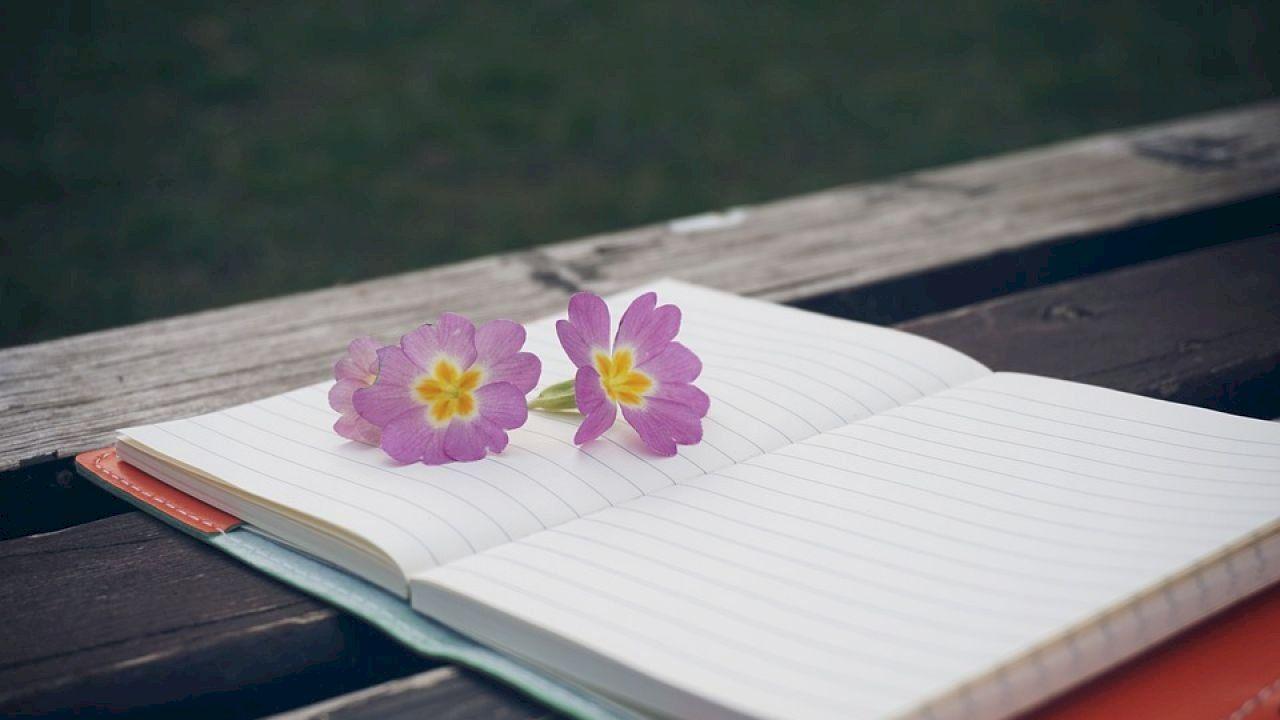 كلام بسيط وجميل Beautiful Words Journal Positive Thinking