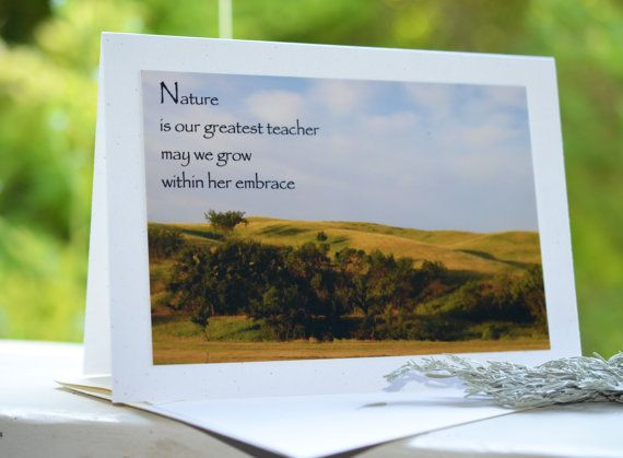 """5x7 recycled greeting card with envelope """"nature"""" 44"""