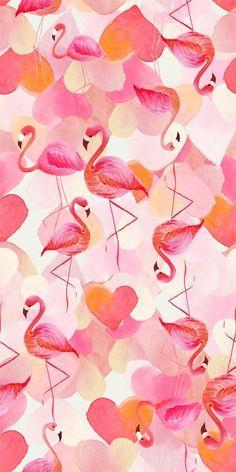Wallpaper Flamingo Cute WallpapersIphone