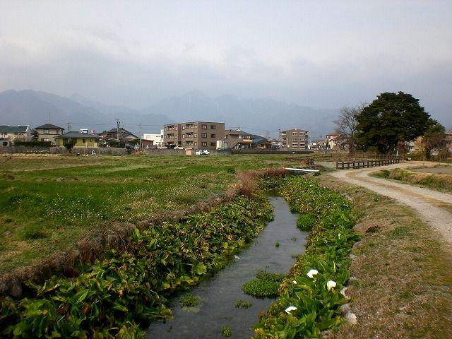 菰野町福村地区 小川 浄閑池(じょうかん池)の湧き水 平成25年 ...
