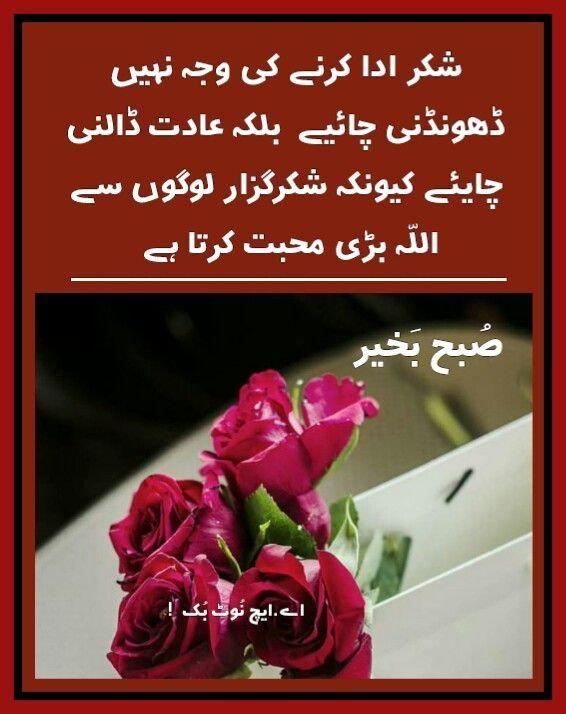 السلام عليكم ورحمة الله وبركاته ص بح ب خیر اے ایچ ن وٹ بک Good Morning Quotes Good Morning Flowers Birthday Quotes