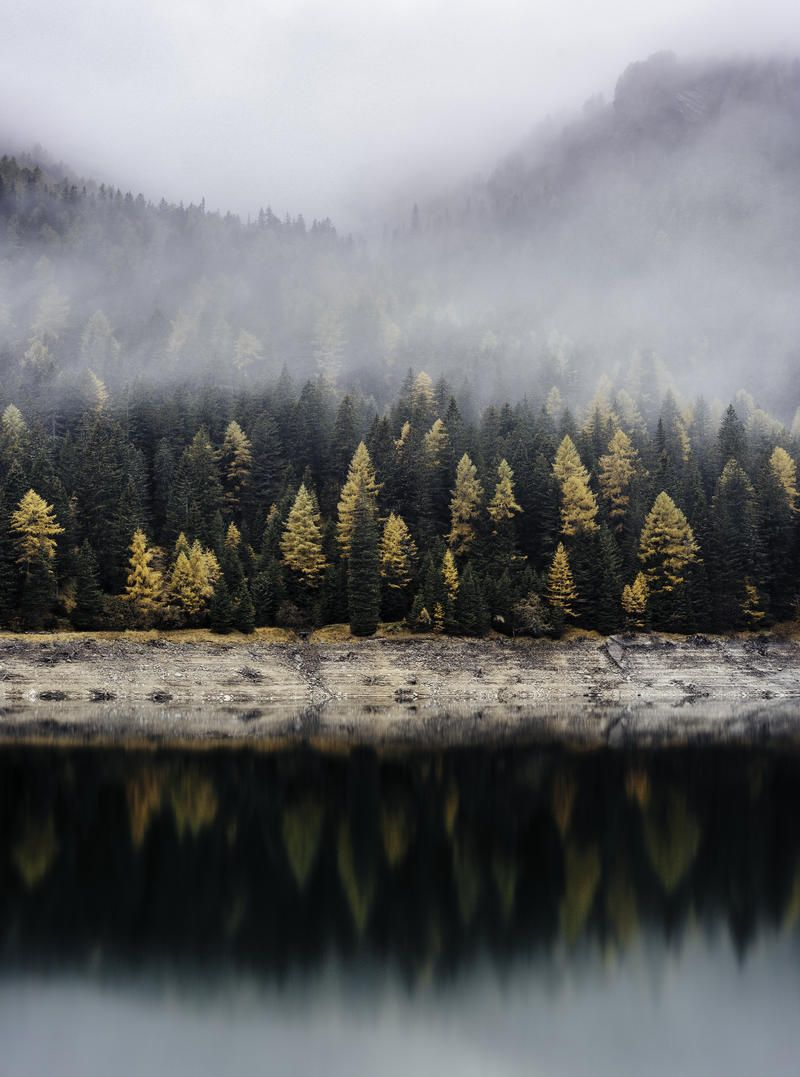 Mist Fog And Reflection Hd Photo Download Nature Photography Landscape Photography Nature Photos