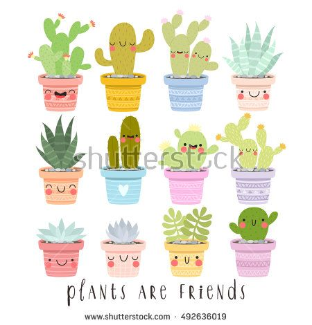 Big set of illustrations of cute cartoon cactus and succulents with funny faces in pots and