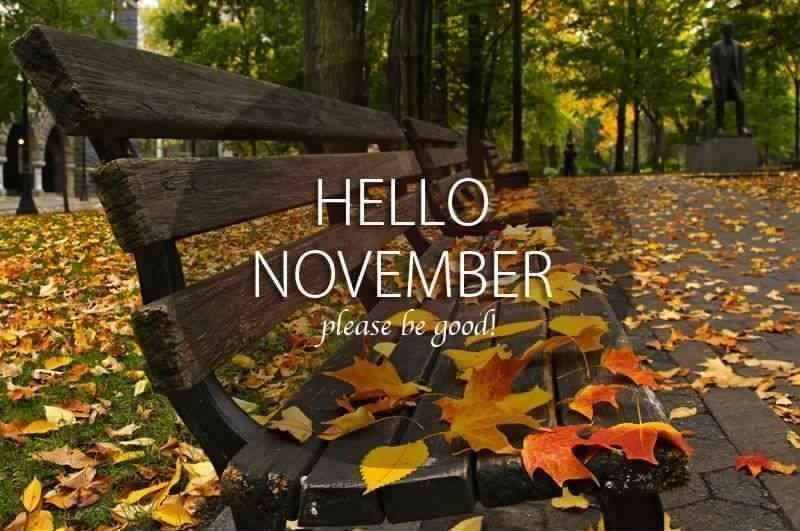 Hello November Quotes Please Be Awesome #hellonovember #november2018 #novemberquotes #hellonovembermonth Hello November Quotes Please Be Awesome #hellonovember #november2018 #novemberquotes #hellonovember Hello November Quotes Please Be Awesome #hellonovember #november2018 #novemberquotes #hellonovembermonth Hello November Quotes Please Be Awesome #hellonovember #november2018 #novemberquotes #hellonovembermonth Hello November Quotes Please Be Awesome #hellonovember #november2018 #novemberquotes #hellonovembermonth