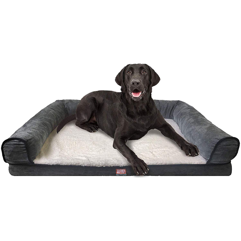 Animal Planet Orthopedic Luxury Dog Bed Premium Memory Foam Pet Dog Sofa Bed Lounger With Washabl Dog Pet Beds Luxury Dog Dog Sofa