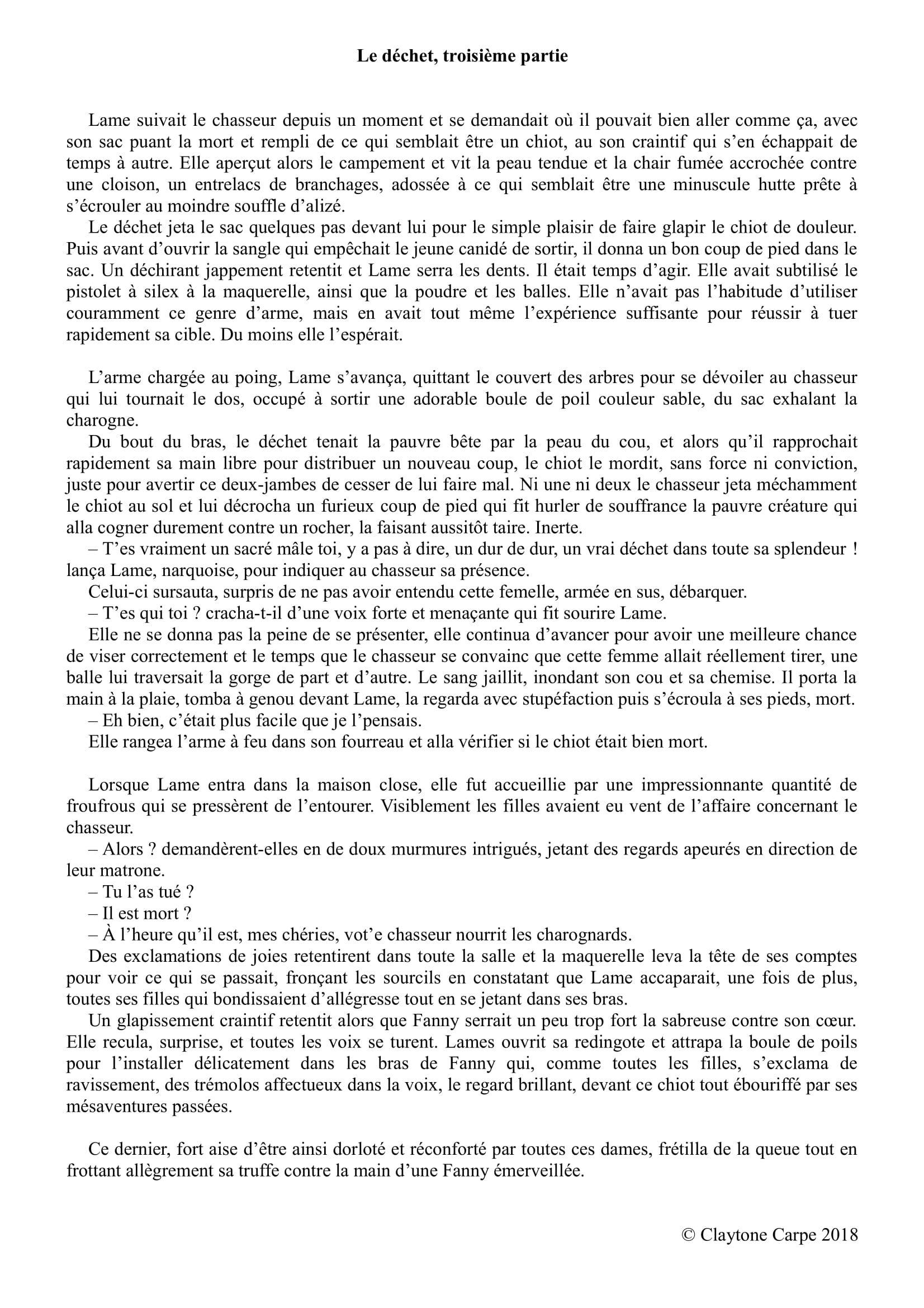 Le D 233 Chet Troisi 232 Me Partie D 233 Chet Chasseur Lame Chien