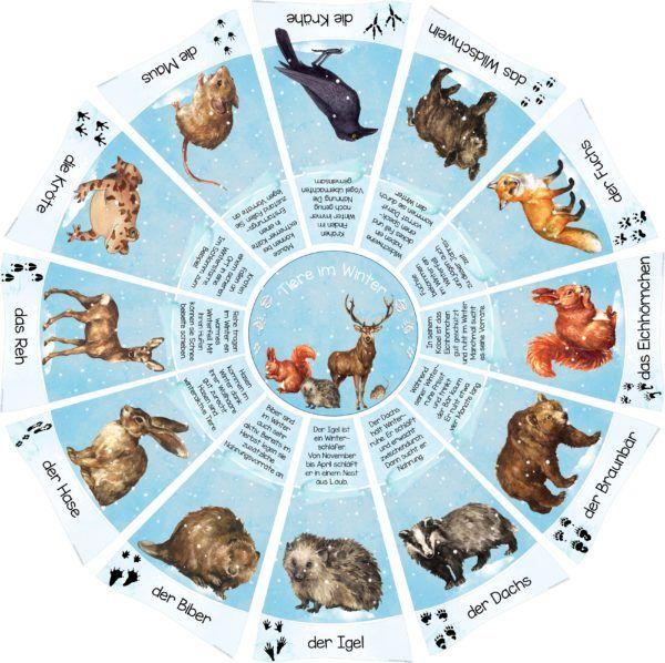 Legekreis Tiere Im Winter Winterschlaf Tiere Thema Winter Im Kindergarten Tiere Wild