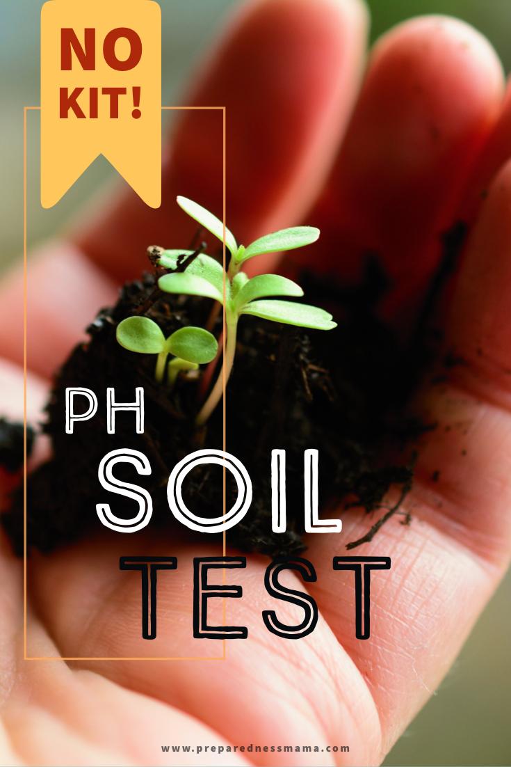 Testing Your Soil pH Without a Kit Diy herb garden, Soil