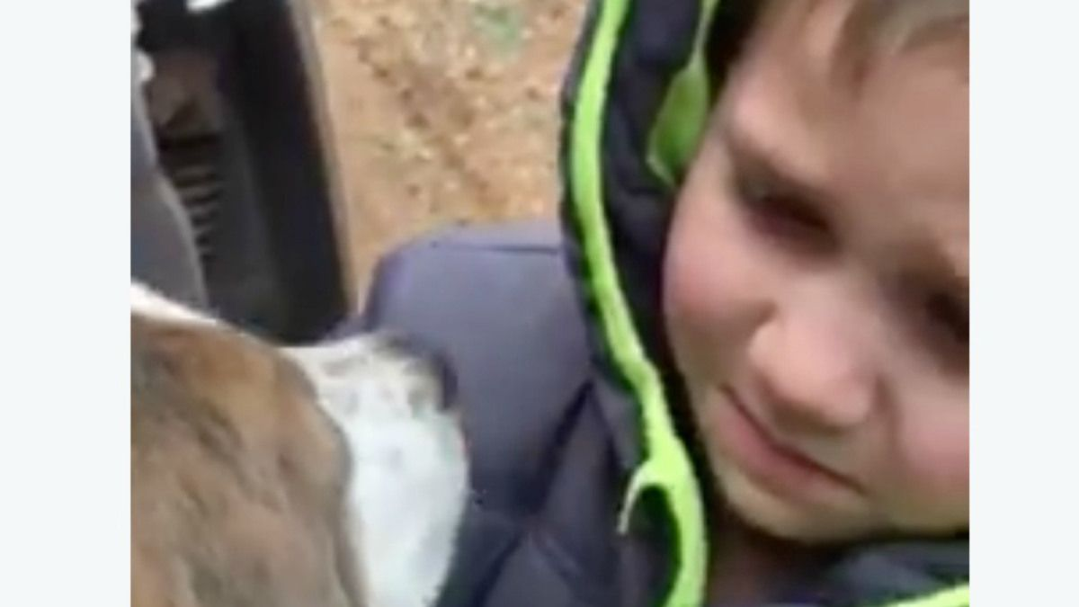 Video Of Emotional Boy Reuniting With Lost Dog Is The Best Thing You Ll Watch Today Losing A Dog Find Pets Dogs