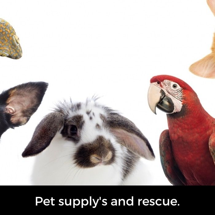 Trying To Save Animals By Buying Food And Donating Finding Homes For Pets With Images Pets Support Animal Save Animals